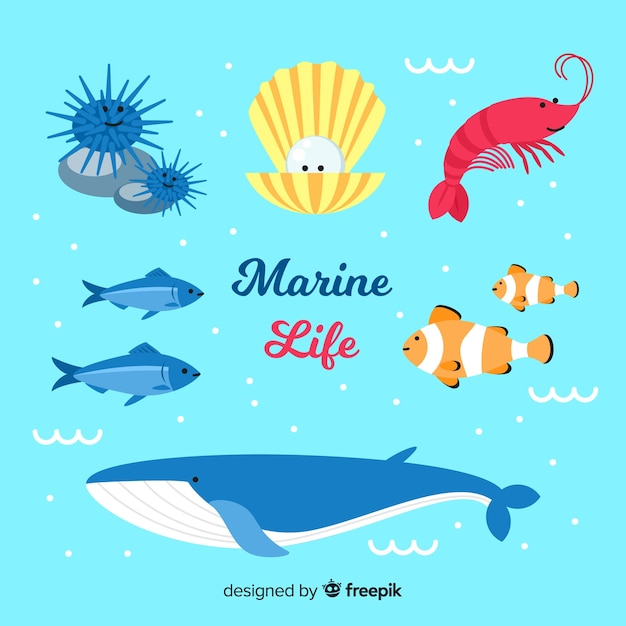 Collection d'animaux marins dessinés à la main Vecteur gratuit