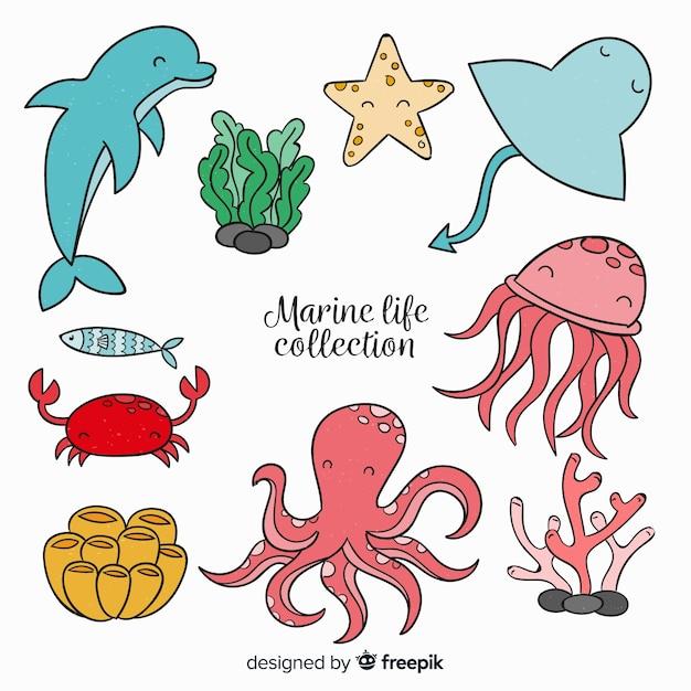Collection d'animaux de mer mignons dessinés à la main Vecteur gratuit
