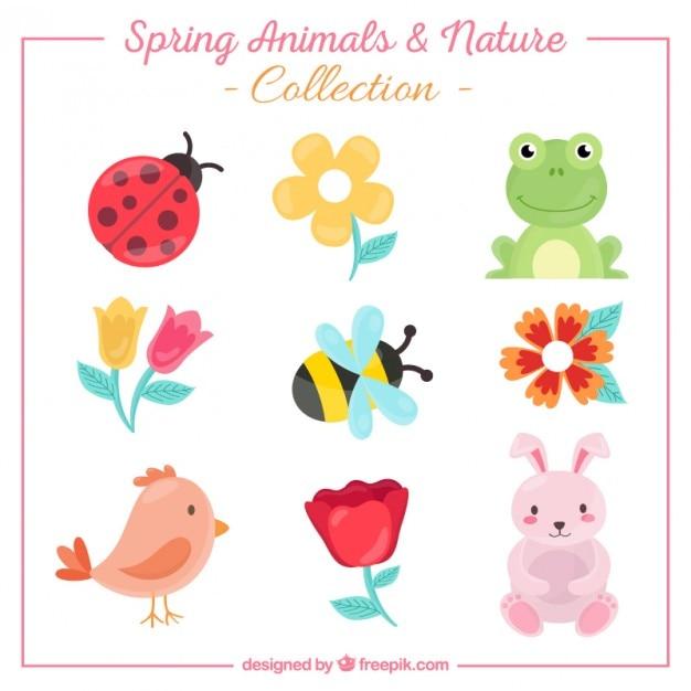 Collection d'animaux mignons et les fleurs Vecteur gratuit