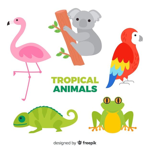 Collection d'animaux tropicaux design plat Vecteur gratuit