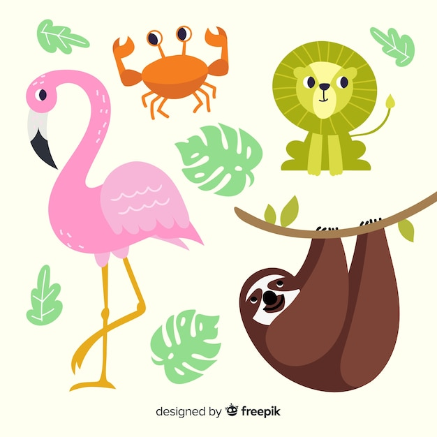 Collection d'animaux tropicaux dessinés à la main Vecteur gratuit