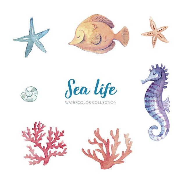 Collection aquarelle de vie marine Vecteur gratuit