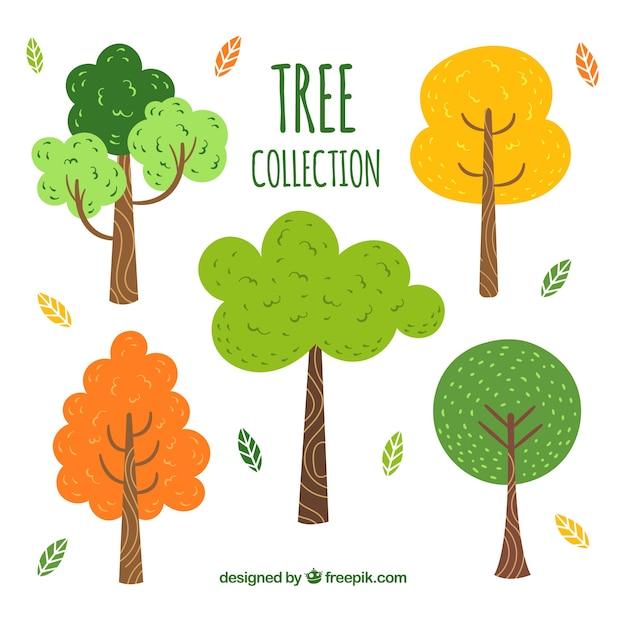 Collection D'arbres Dans Un Style Dessiné à La Main Vecteur gratuit