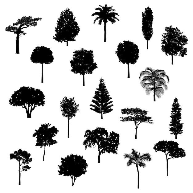 Collection D'arbres Vecteur gratuit