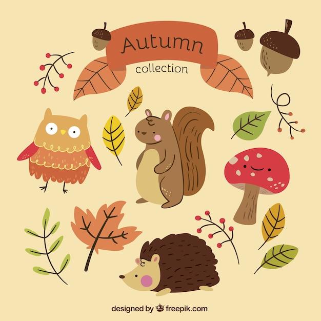 Collection d'automne avec des animaux dessinés à la main Vecteur gratuit