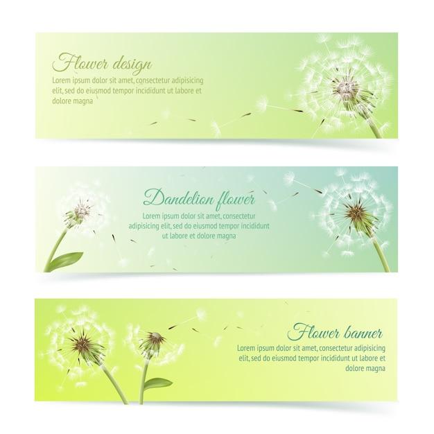 Collection De Bannières Et De Rubans Avec Un Pissenlit D'été Et Des éléments De Conception De Pollens Illustration Vectorielle Isolée Vecteur gratuit