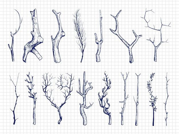 Collection De Branches De Bois Dessinées à La Main Vecteur Premium