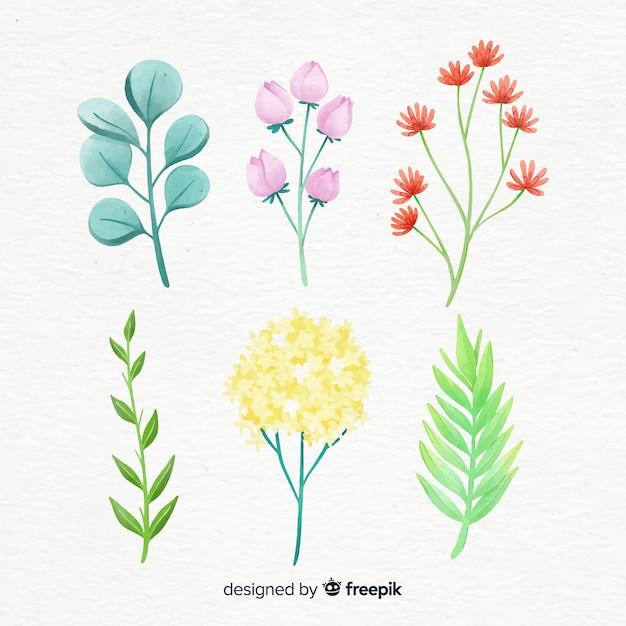 Collection de branches florales dans un style aquarelle Vecteur gratuit