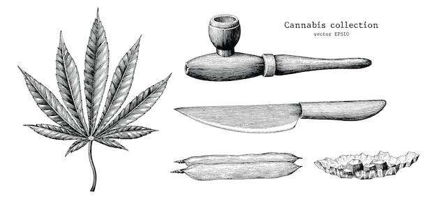 Collection De Cannabis Main Dessiner Vintage Isolé Sur Fond Blanc Vecteur Premium
