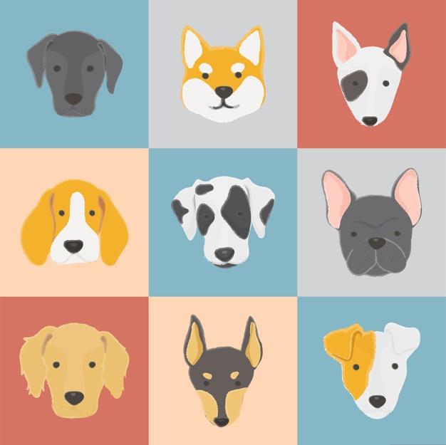 Collection de chien Vecteur gratuit