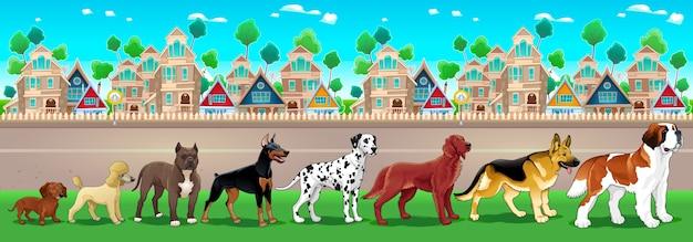 Collection de chiens de race pure alignés sur la vue de la ville vector cartoon illustration Vecteur gratuit