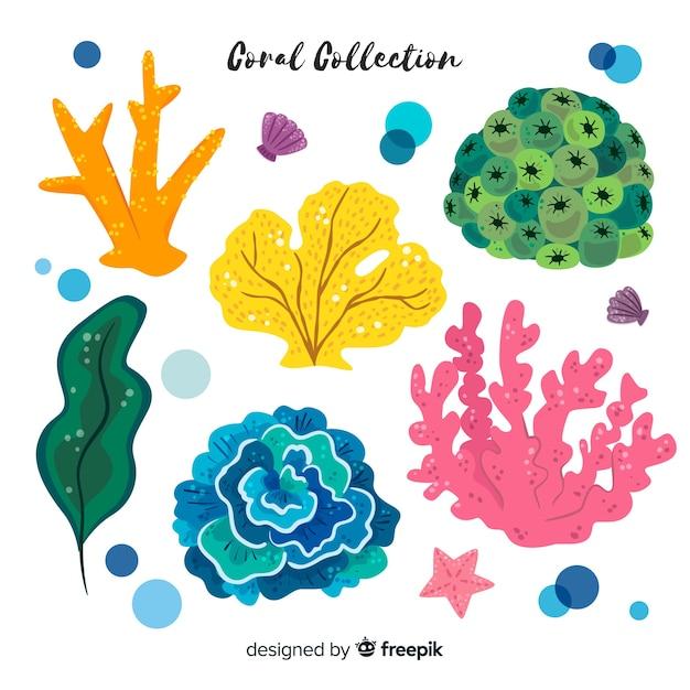 Collection corail Vecteur gratuit