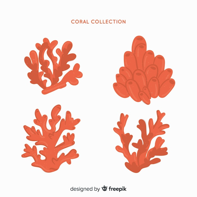 Collection de coraux dessinés à la main Vecteur gratuit