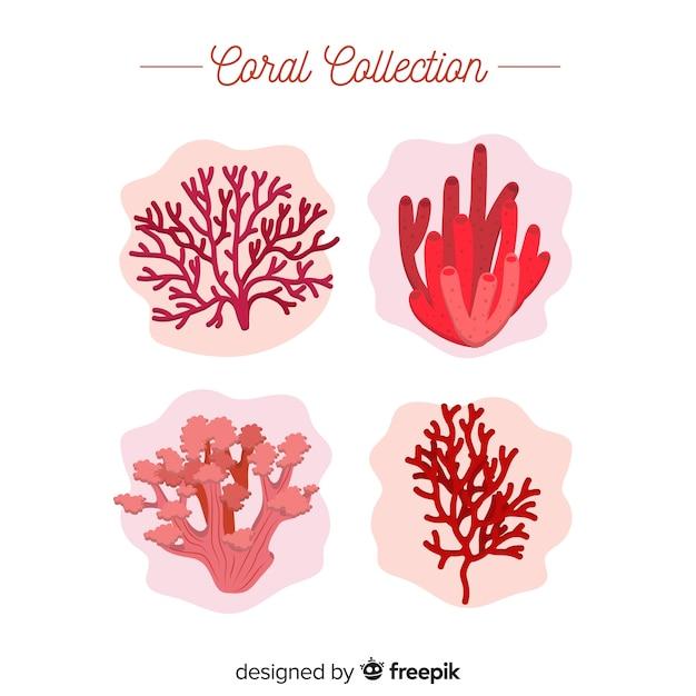 Collection de coraux plats Vecteur gratuit