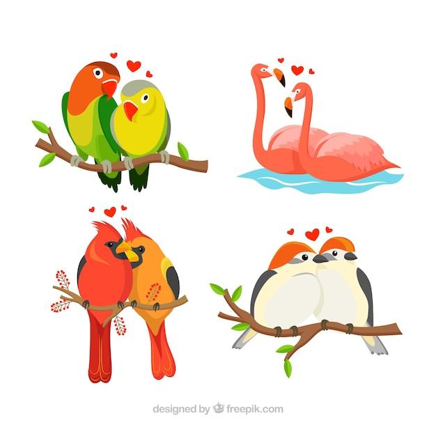 Collection De Couple D'oiseaux Pour La Saint-valentin Vecteur gratuit