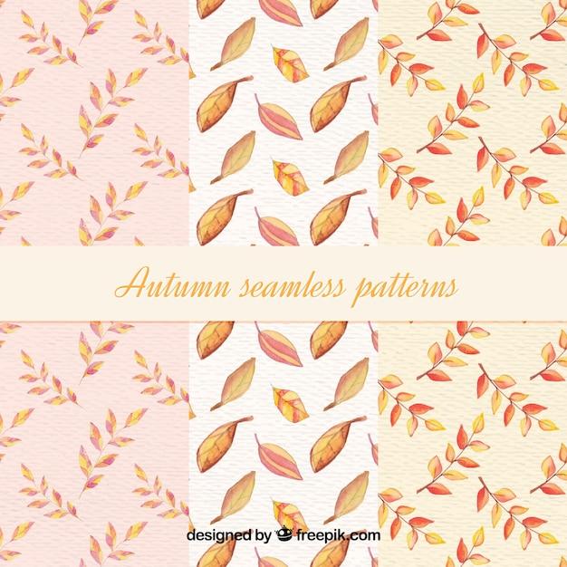 Collection de modèles d'automne Vecteur gratuit
