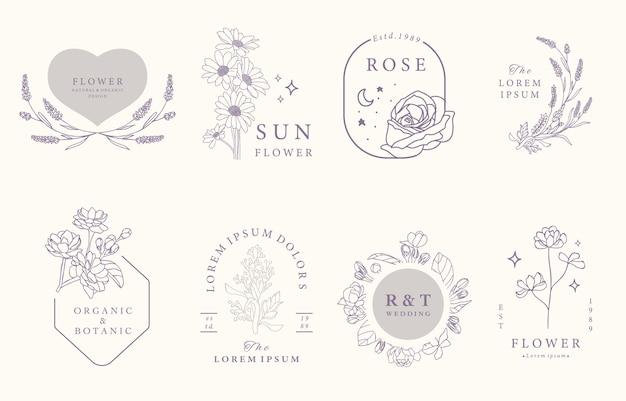 Collection De Design Occulte De Beauté Avec Lavande, Jasmin, Rose. Vecteur Premium