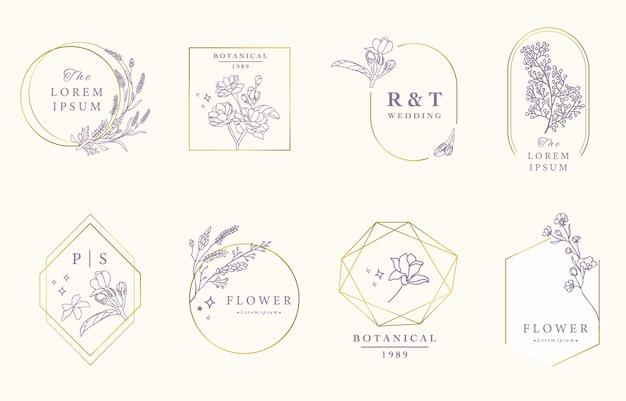 Collection De Design Occulte De Beauté Avec Lavande, Jasmin. Vecteur Premium