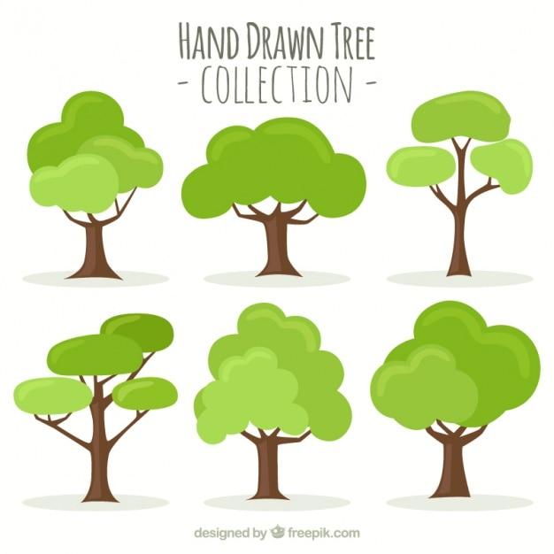 Collection Dessinée à La Main De L'arbre Vecteur Premium