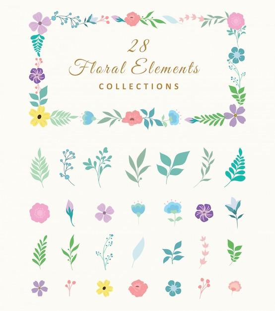 Collection D'éléments Floraux Vecteur Premium