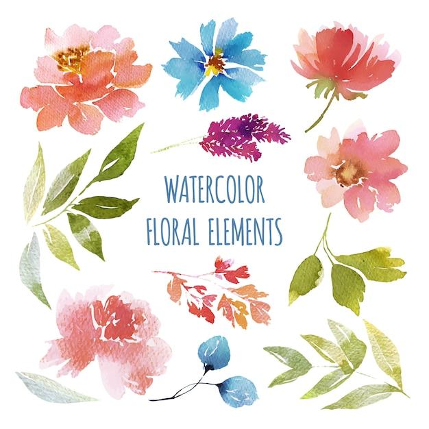 Collection d'éléments vectoriels de fleurs aquarelle Vecteur Premium