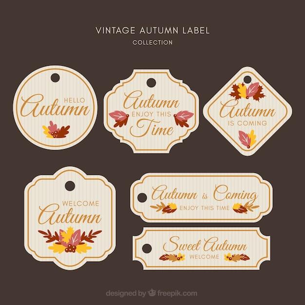 Collection d'étiquettes d'automne créative Vecteur gratuit