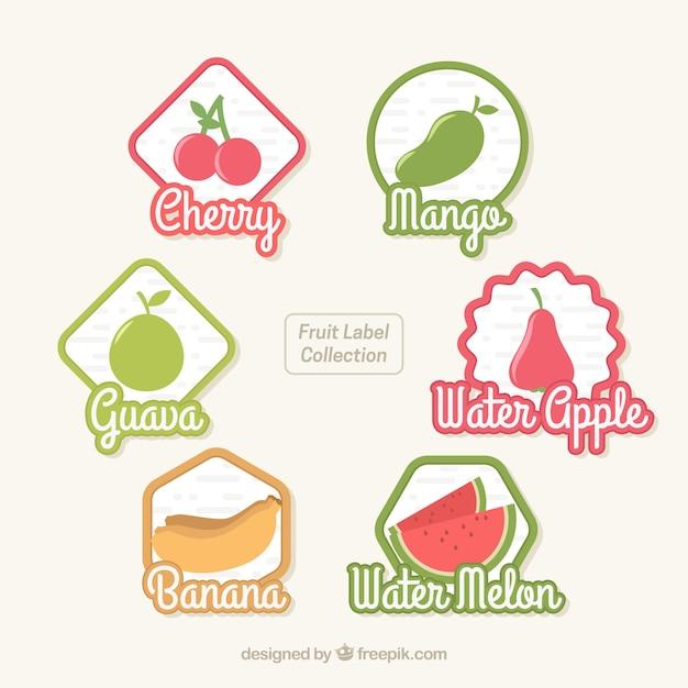 Collection d'étiquettes de fruits Vecteur gratuit