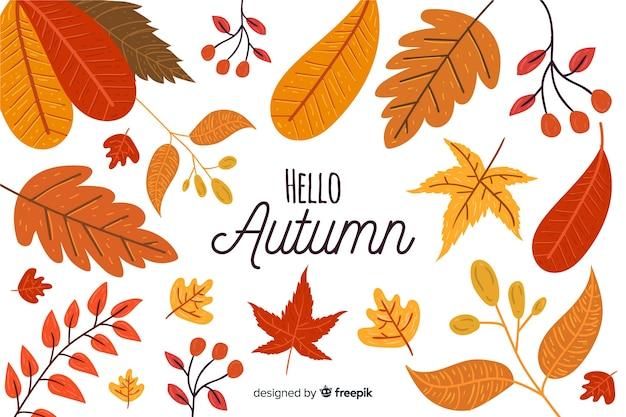 Collection de feuilles d'automne dessinés à la main Vecteur gratuit