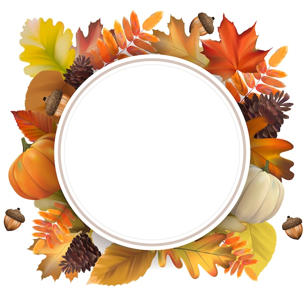 Collection de feuilles d'automne vector Vecteur gratuit