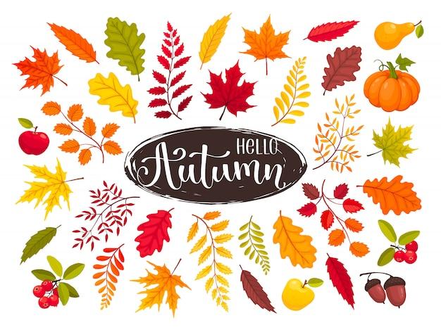 Collection de feuilles d'automne Vecteur Premium