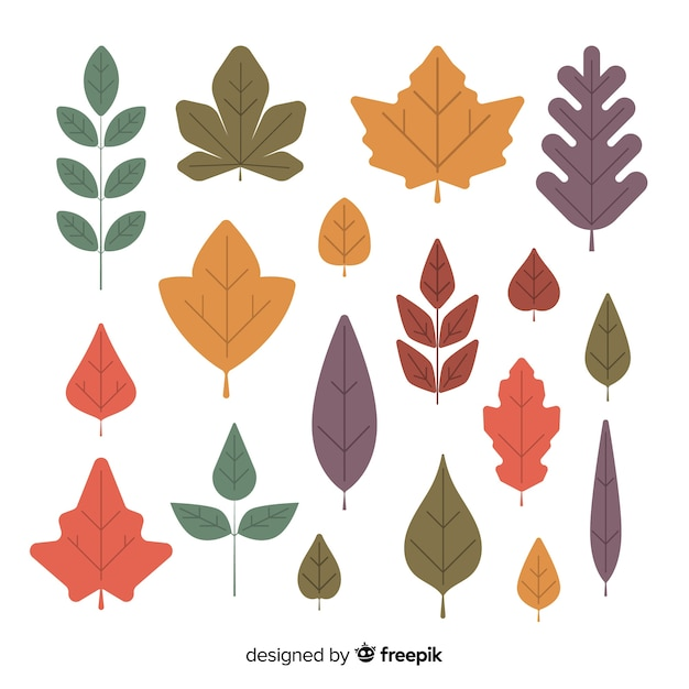 Collection de feuilles de forêt automne dessinés à la main Vecteur gratuit