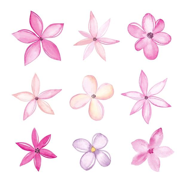 Collection De Fleurs Aquarelle Isolée Sur Fond Blanc Vecteur Premium