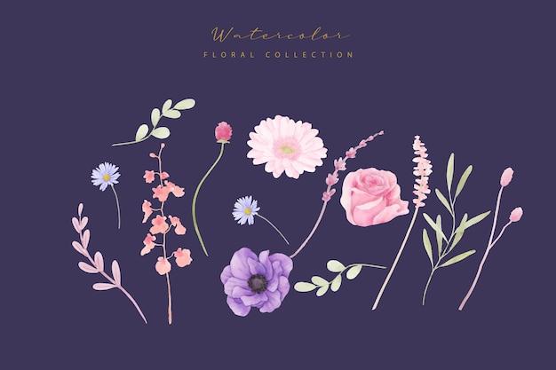 Collection De Fleurs Aquarelle Rose, Anémone Et Gerbera Vecteur gratuit