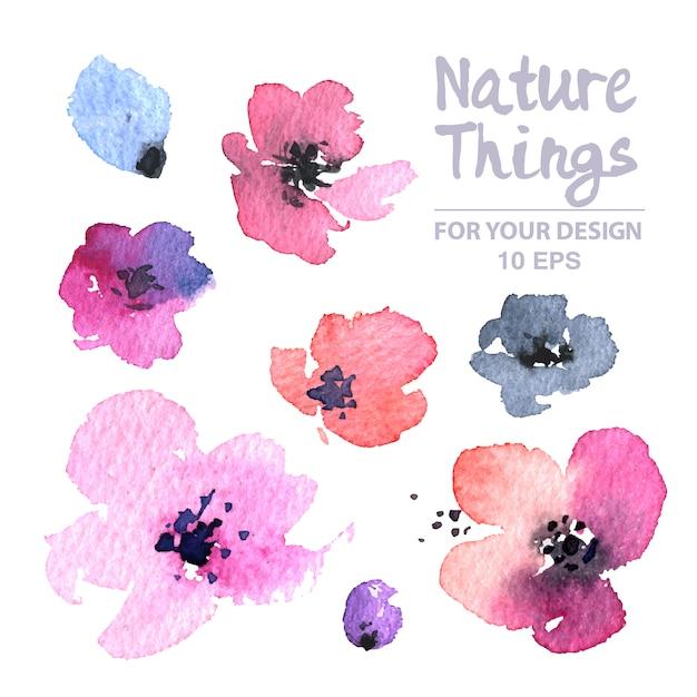 Collection de fleurs d'aquarelle Vecteur gratuit