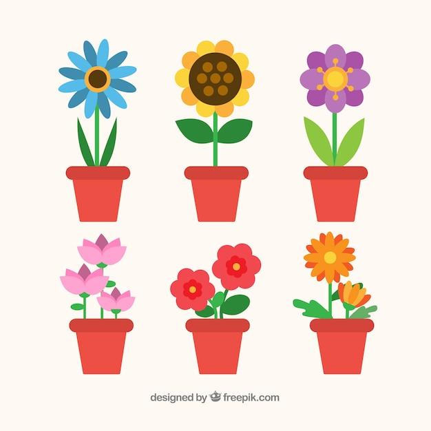 Collection de fleurs colorées dans un style plat Vecteur gratuit