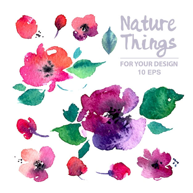 Collection de fleurs et de feuilles d'aquarelle Vecteur gratuit