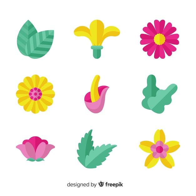 Collection de fleurs et feuilles plates colorées Vecteur gratuit