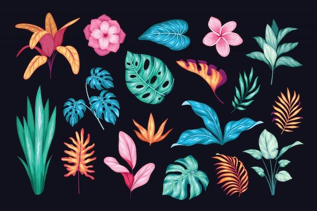 Collection florale dessinée belle main vintage Vecteur Premium
