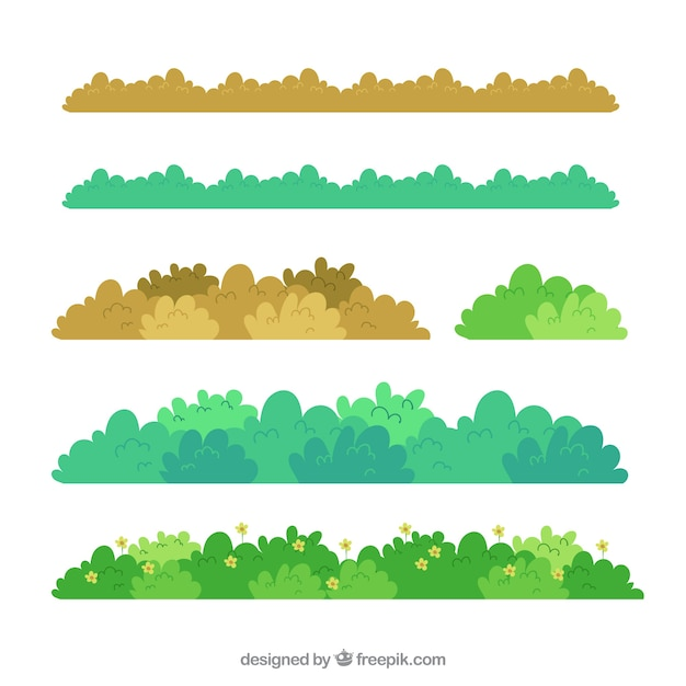 Collection D'herbe De Bordure En Différentes Couleurs Vecteur Premium