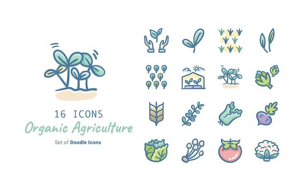 Collection D'icônes Doodle Pour L'agriculture Biologique Vecteur Premium