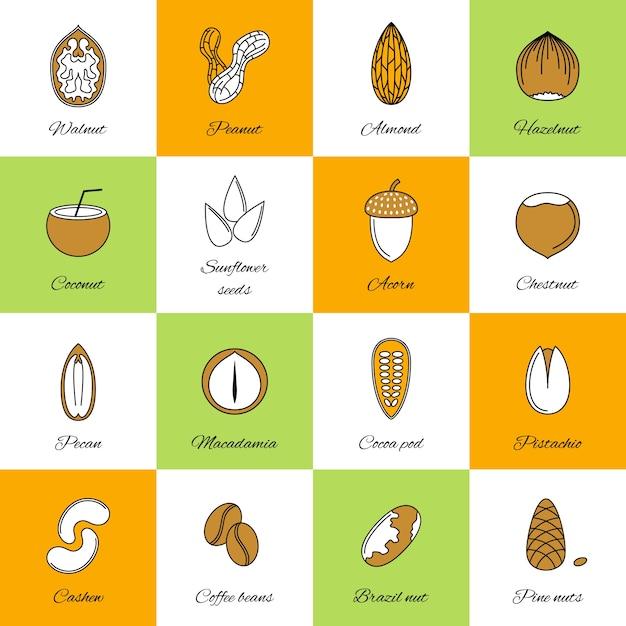 Collection d'icônes de noix Vecteur gratuit