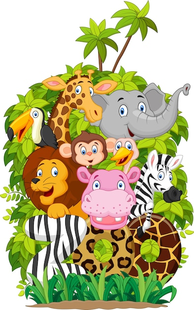 Collection d'illustrations d'animaux de zoo sur fond blanc Vecteur Premium