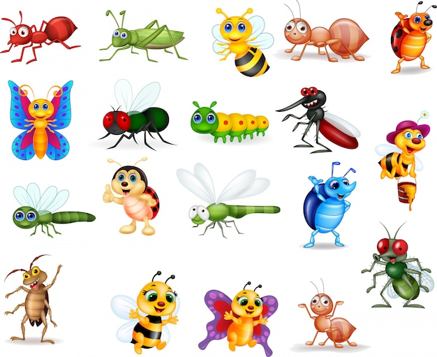 Collection d'insectes de dessin animé Vecteur Premium