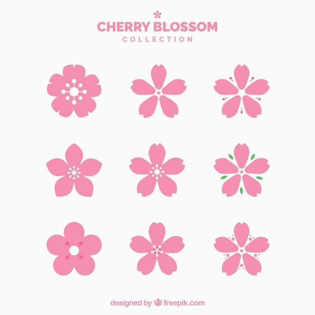 Collection De Jolies Fleurs De Cerisier Vecteur gratuit