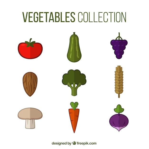 Collection de légumes de couleur Vecteur gratuit