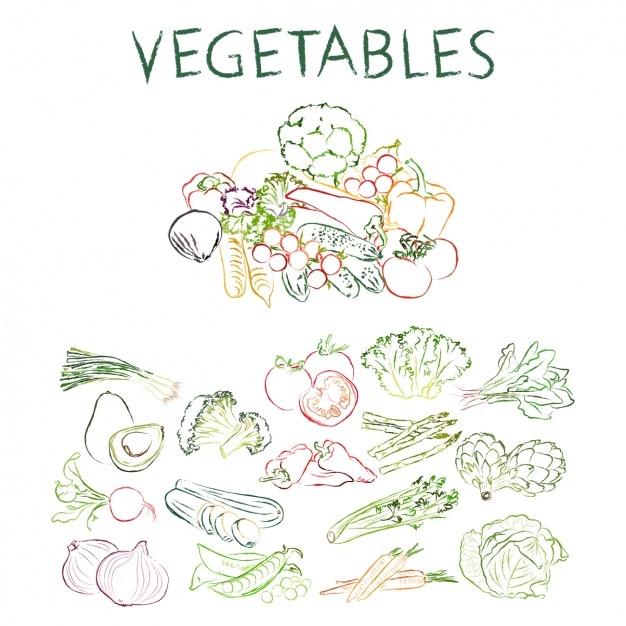 Collection de légumes dessinés à la main Vecteur gratuit