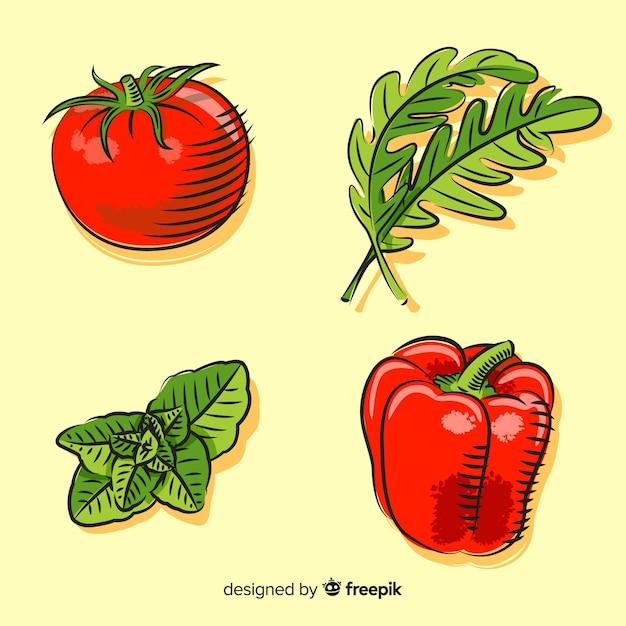 Collection de légumes Vecteur gratuit