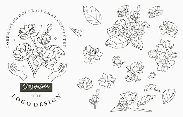 Collection De Logos De Jasmin Noir Avec Des Feuilles. Vecteur Premium