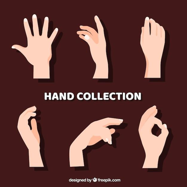 Collection De Mains Avec Des Poses Différentes Dans Un Style Dessiné à La Main Vecteur Premium