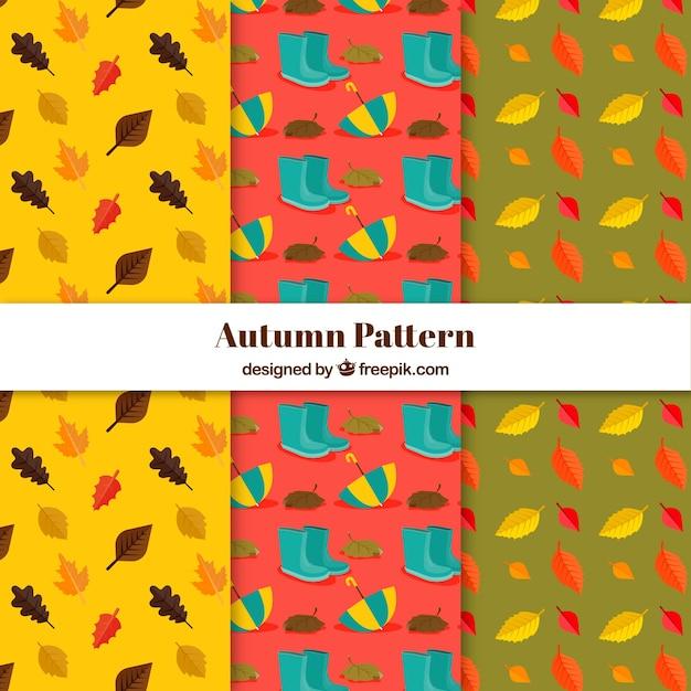 Collection de modèles automne avec vecteur libre des éléments mignons Vecteur gratuit
